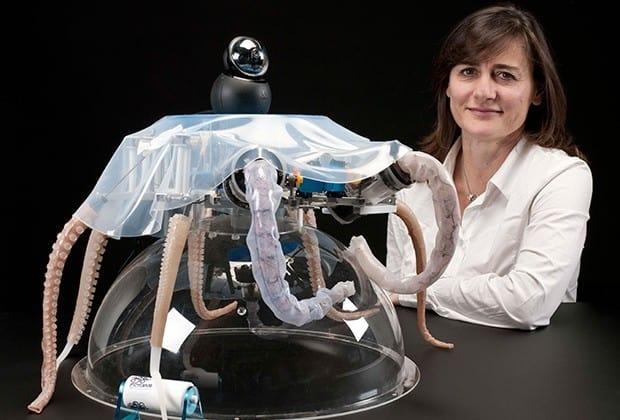 octopus robot