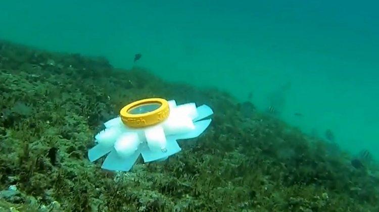 jellyfish robot